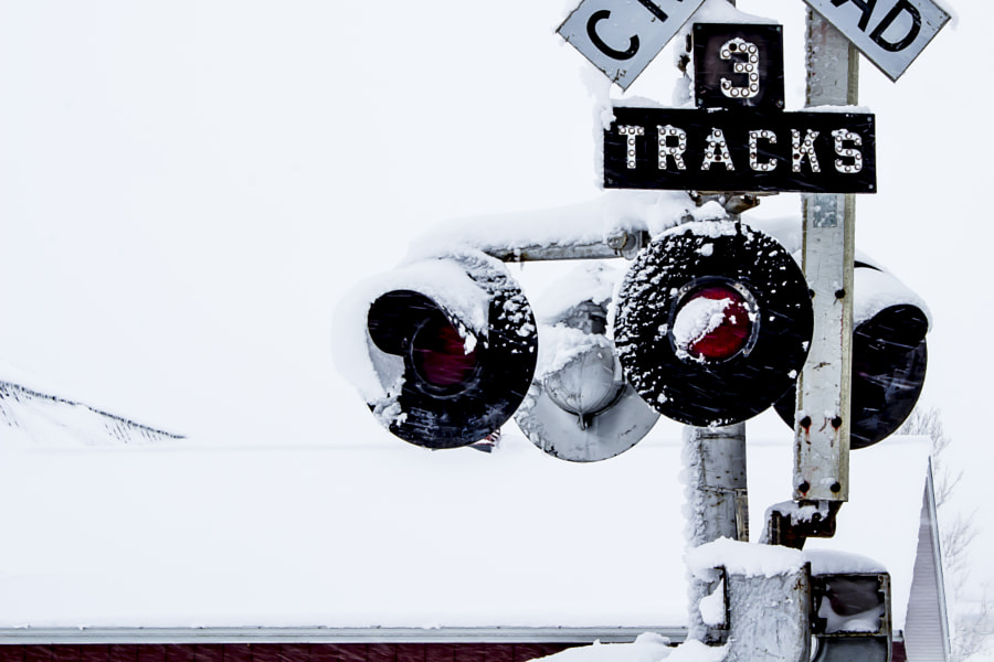 Photograph 3 Tracks in the Snow by Jeff Carter on 500px