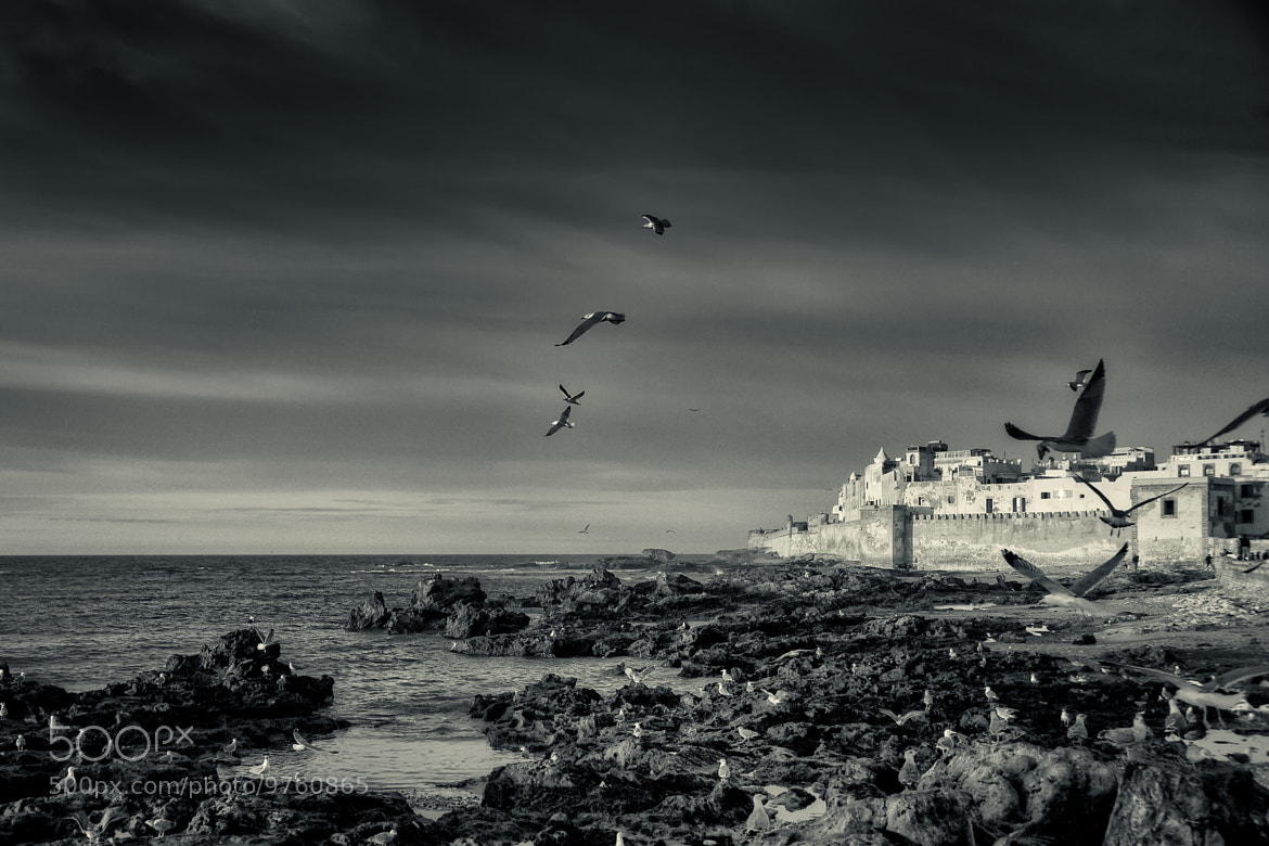 Photograph Essaouira, Morocco by Owen G on 500px