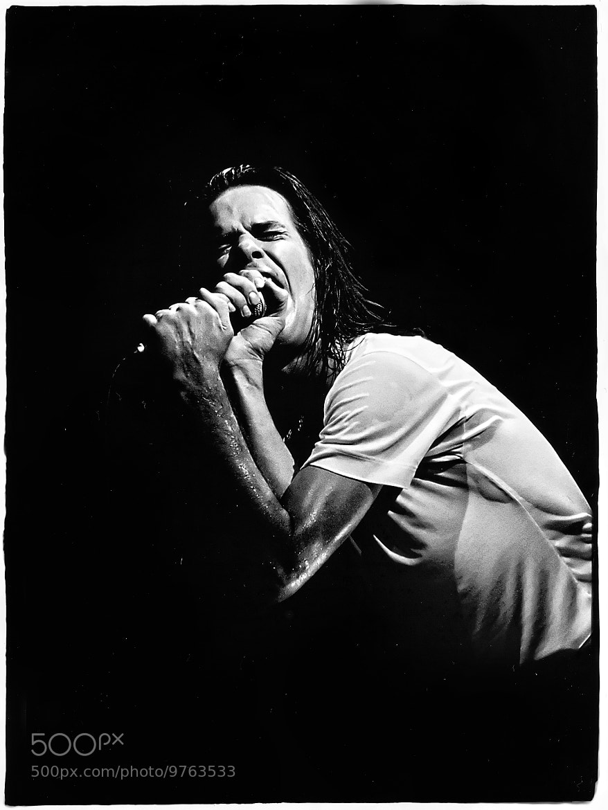 Photograph Nick Cave  by Luuk Denekamp on 500px