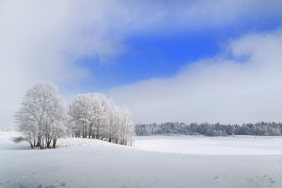 Winter panorama by Zenonas Rotautas on 500px.com