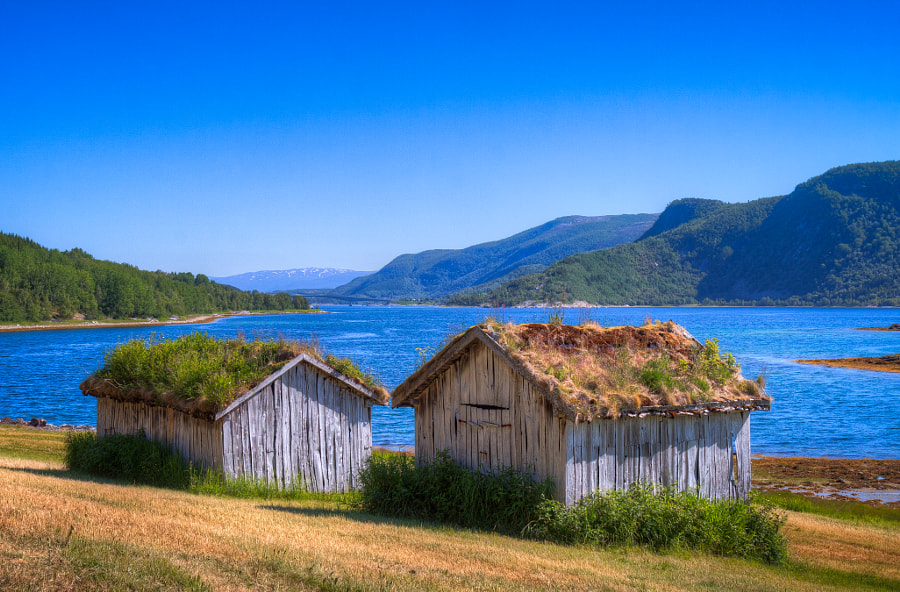 Grassy roofs by Håkan Johansson on 500px.com
