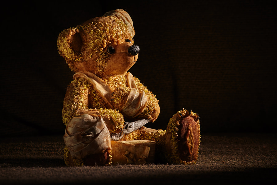Photograph Injured Teddy Bear by Teemu Tretjakov on 500px
