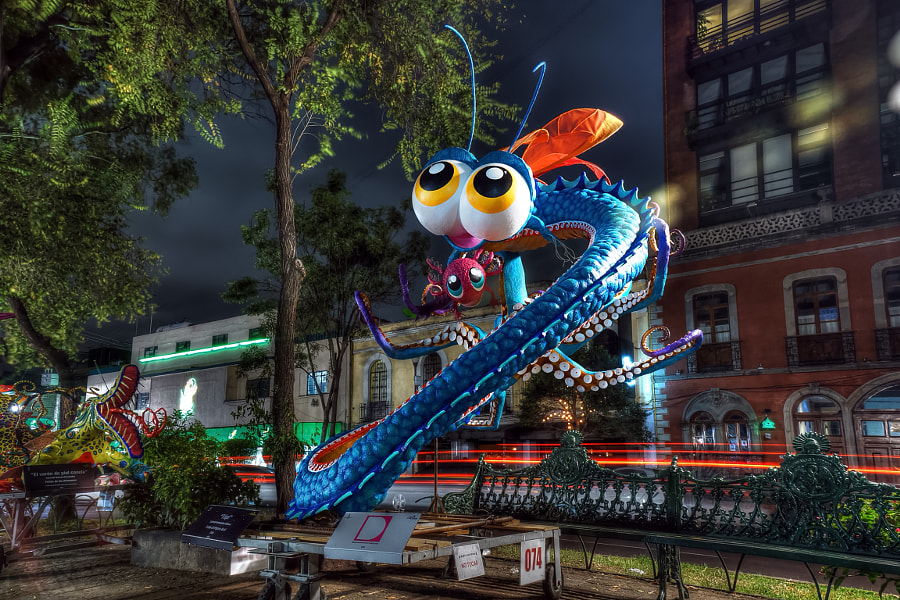 Photograph Alebrijes  by jose jasso on 500px