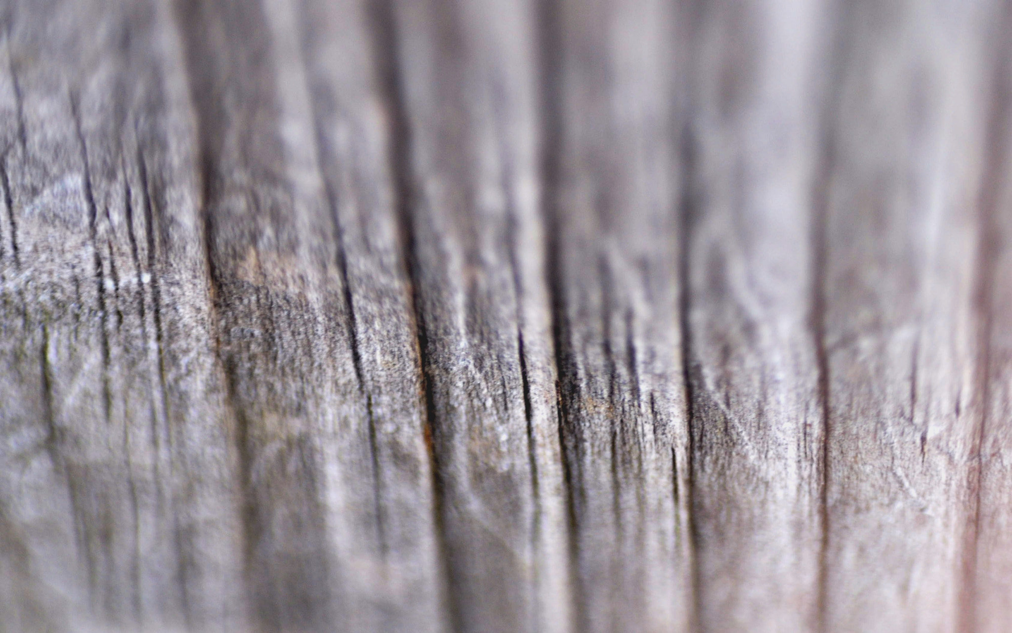 Photograph Creases  by Sam Wade on 500px
