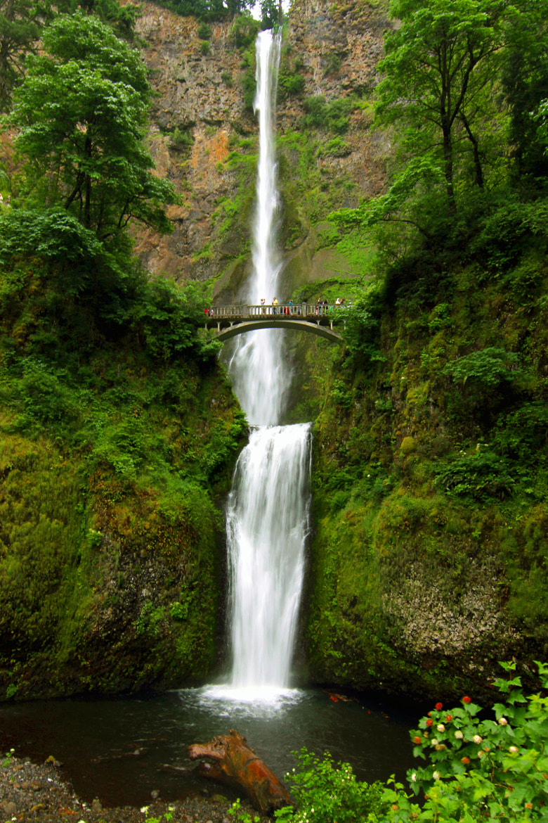 Photograph Multnomah Falls by Cole Chase on 500px