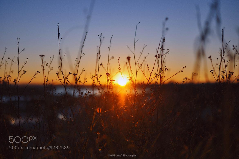 Photograph yesterday's sunset by Liya Mirzaeva on 500px