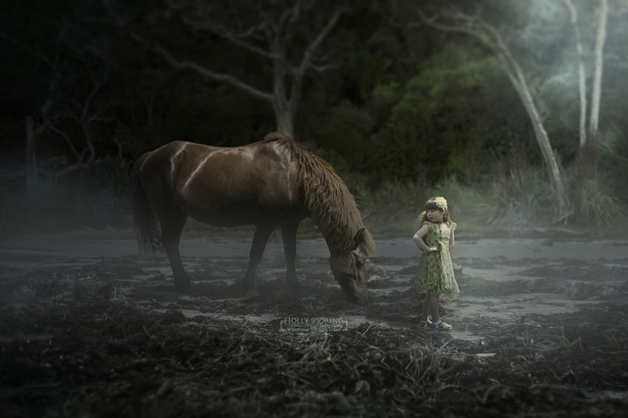 Photograph Violet and the Horse by Holly Spring on 500px