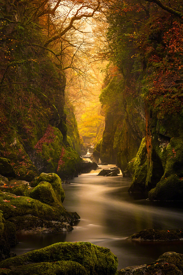 Fairy Glen Gorge, River Conwy by Craig McCormick on 500px.com