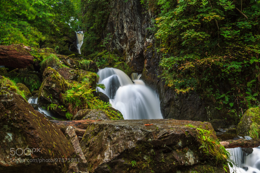 New on 500px : fast flowing stream by gellis478 by ...