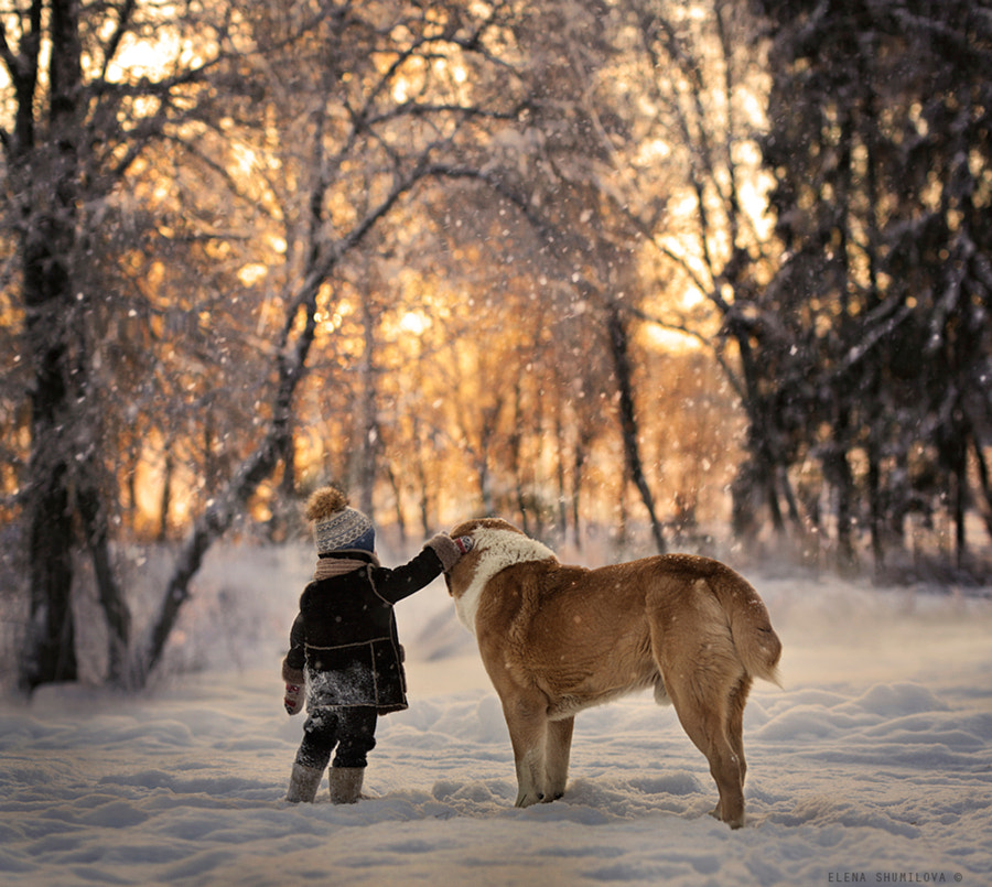 Photograph one more sunrise together.. by Elena Shumilova on 500px