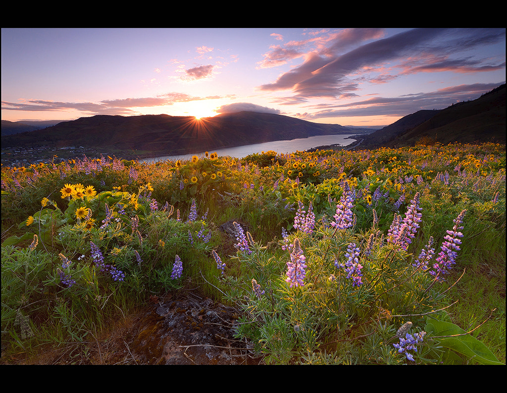 Photograph Rowena Crest.... by Andrew Kumler on 500px