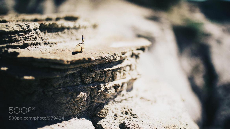 Photograph Miniture by Tyler Stalman on 500px
