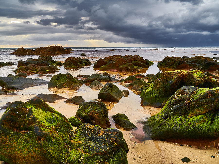 Photograph Betka Beach, Mallacoota Victoria Australia by Travis Chau on 500px