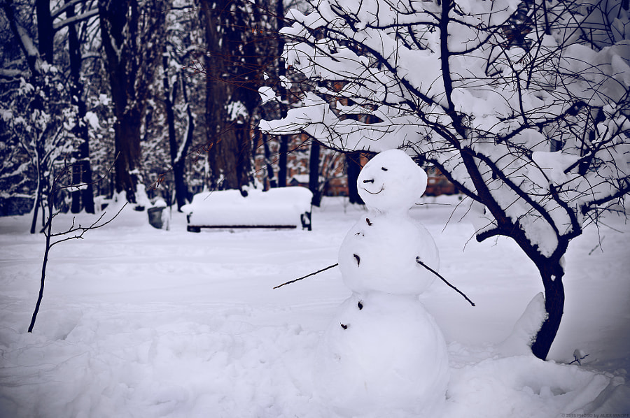 Snowman by Alex Irnoff on 500px.com