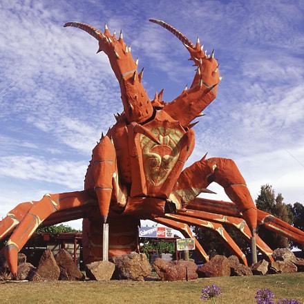 The Big Lobster Kingston South Australia Feb