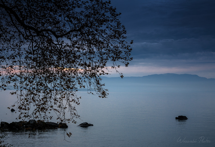 Photograph Blue hour on the Léman (France) by Wassabi Photos on 500px