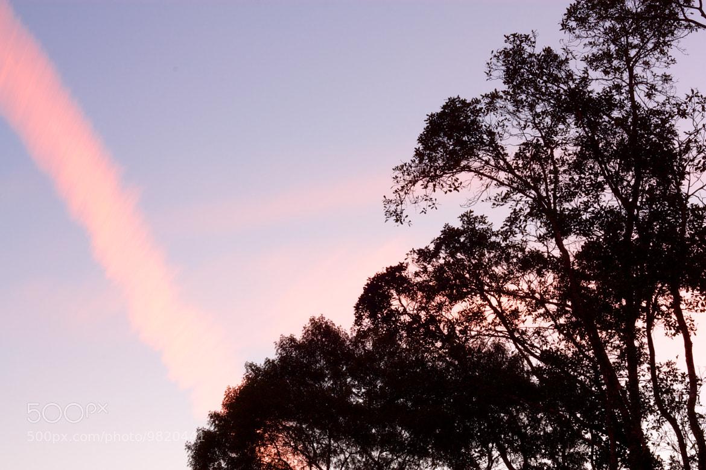Photograph Vanilla Sky by Eduardo Fonseca on 500px