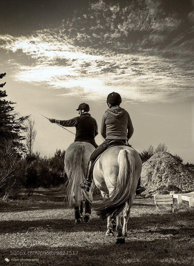 Photograph Horseback Riding by Michael Peitersen on 500px