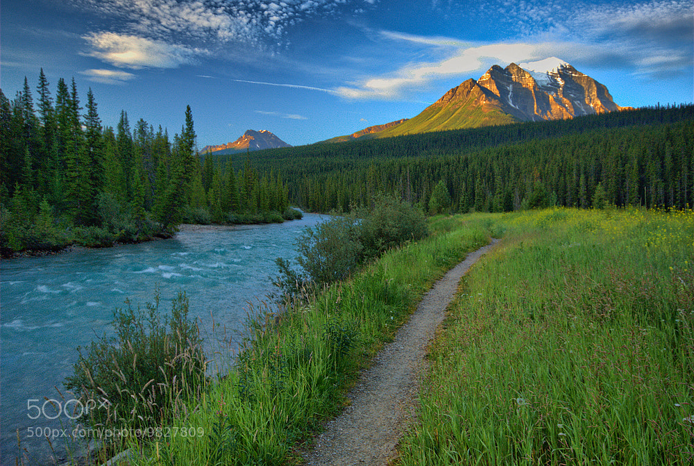Photograph River Path by Aubrey Stoll on 500px