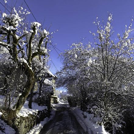 Montagny sous la neige