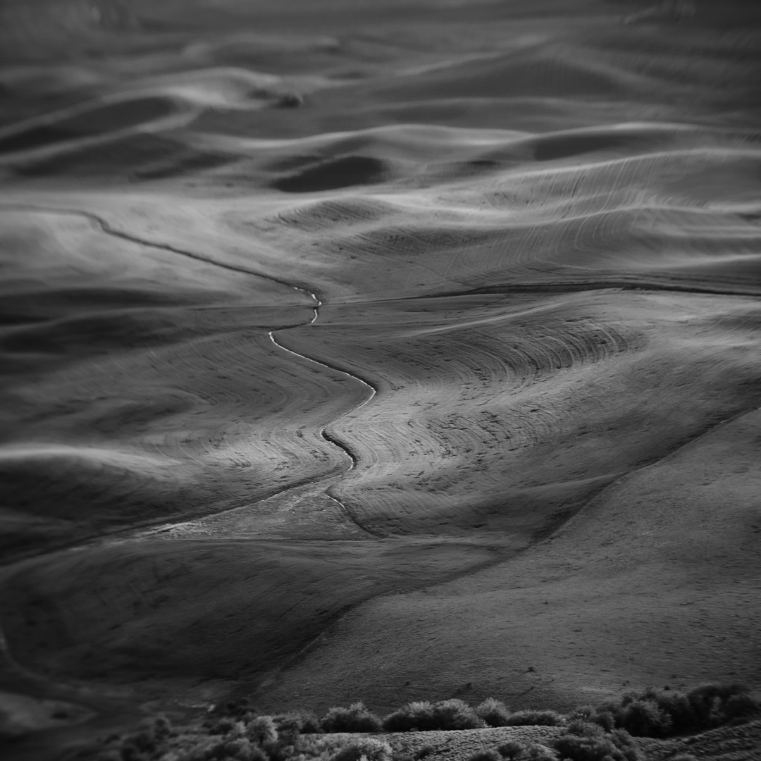 Photograph Palouse in B&W by Destin Ferdun on 500px