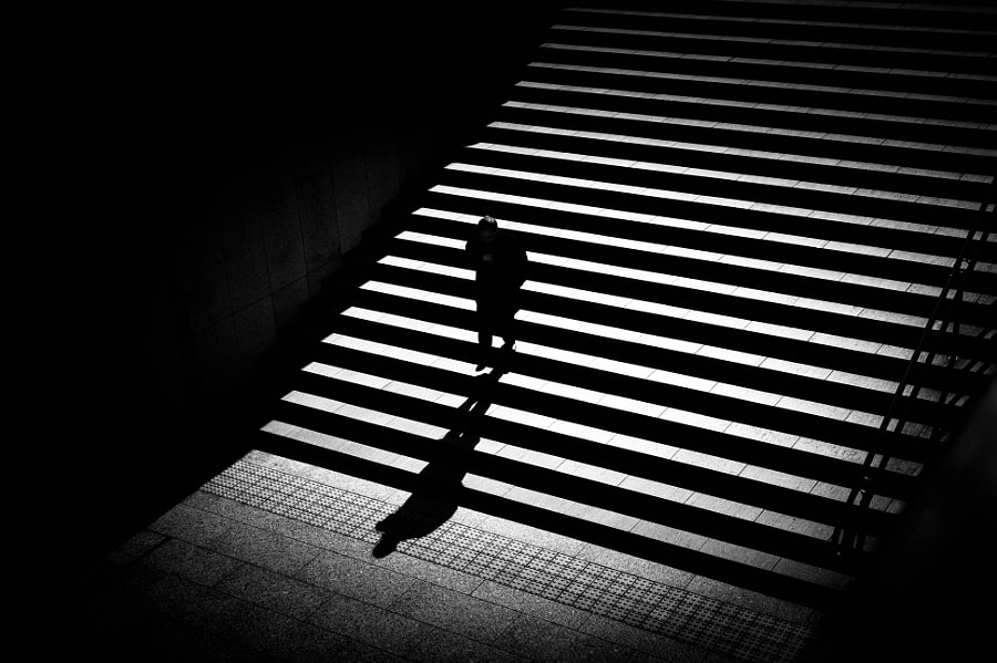 Photograph Cold morning by Junichi Hakoyama on 500px