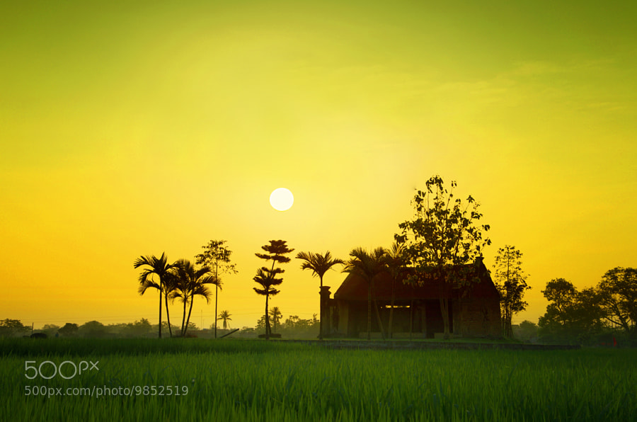Photograph Sunset 1 by Ls Trung (Roger Nguyen) on 500px