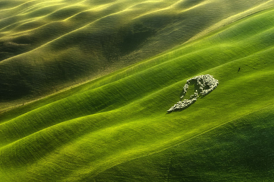 Photograph Grassland ... by Boguslaw Strempel on 500px