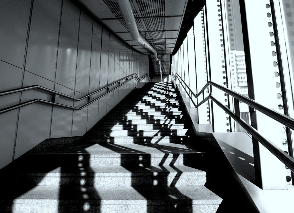 Photograph Shadows and stairs by Rainer Leiss on 500px