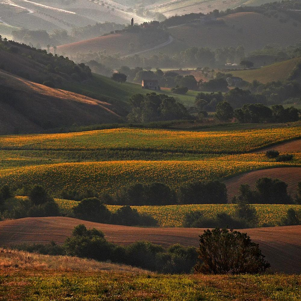 Photograph The colors of the morning by ivo pandoli on 500px