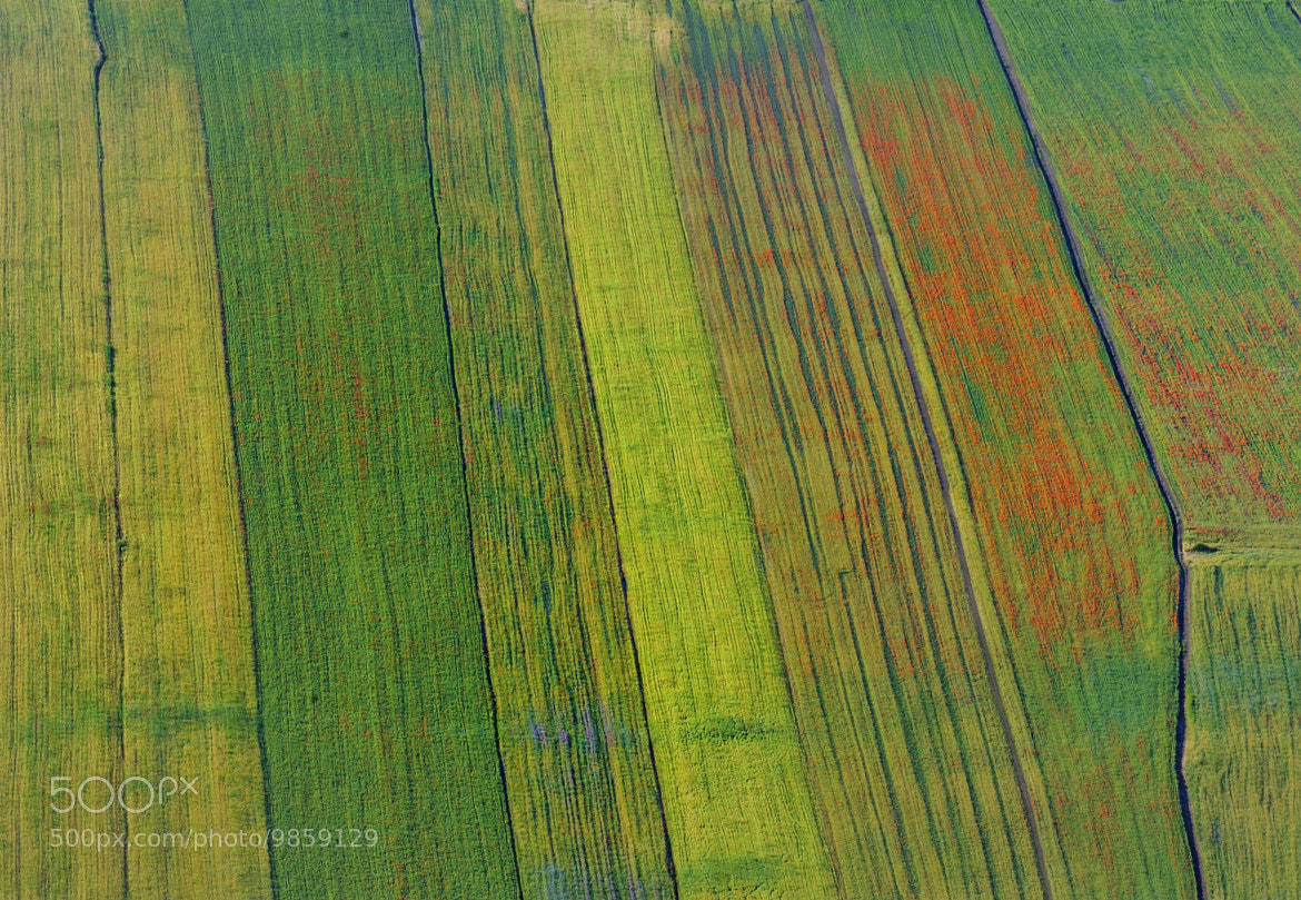 Photograph fields by mauro maione on 500px