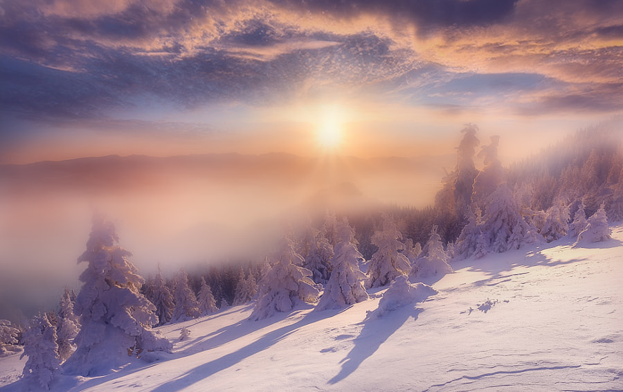 Cold light by Maurizio Fecchio on 500px.com