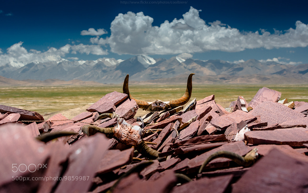 Photograph Sacrifice by Coolbiere. A. on 500px