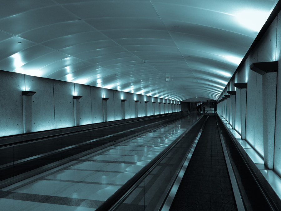 Photograph People Mover by Andy Roth on 500px