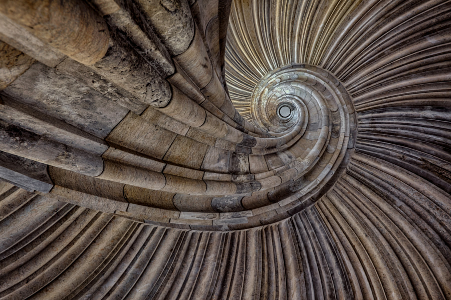 Photograph shell by Christian Richter on 500px