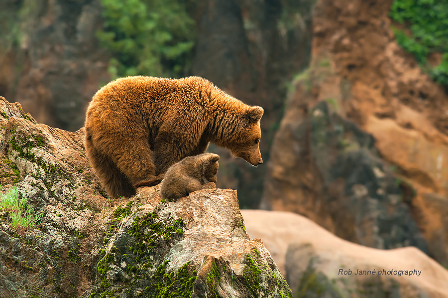 On Top by Rob Janné on 500px.com