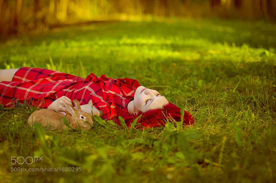 Photograph Girl with Rabbit by Olga Gabsattarova on 500px