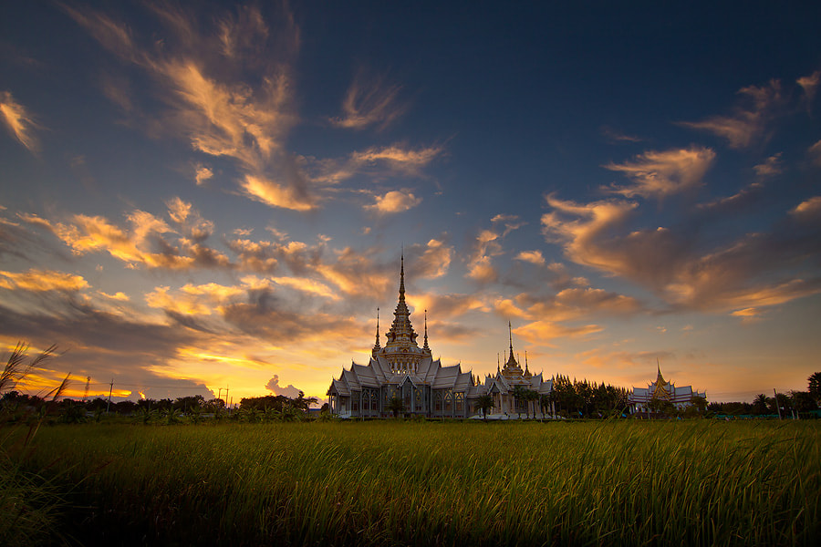 Photograph Untitled by jeerasak Chaisongmuang on 500px
