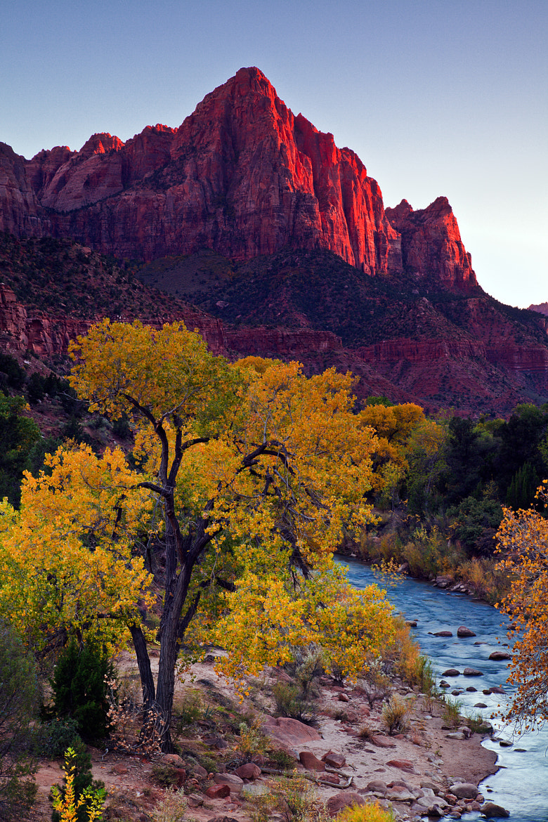 Photograph Watchman Sunset, Zion NP by Greg Clure on 500px