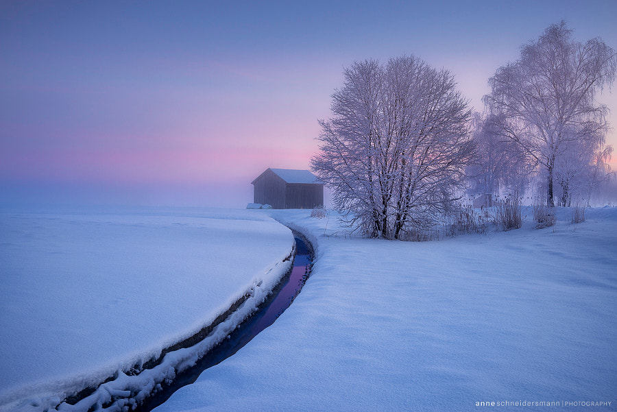 Shades of Winter Dawn by Anne Schneidersmann on 500px.com
