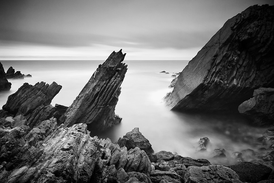 Photograph rough & soft by Paulo Rocha on 500px