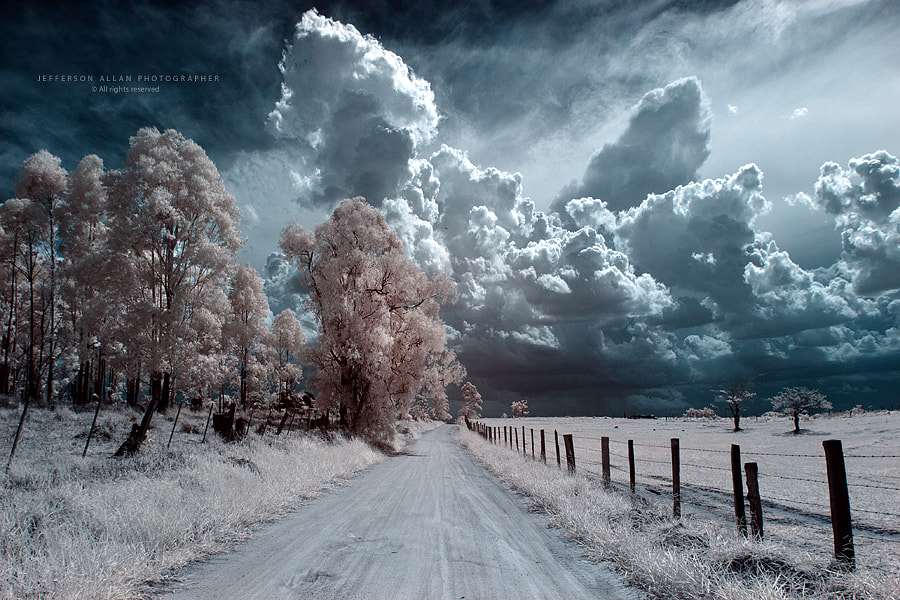 Photograph Infrared by Jefferson Allan on 500px