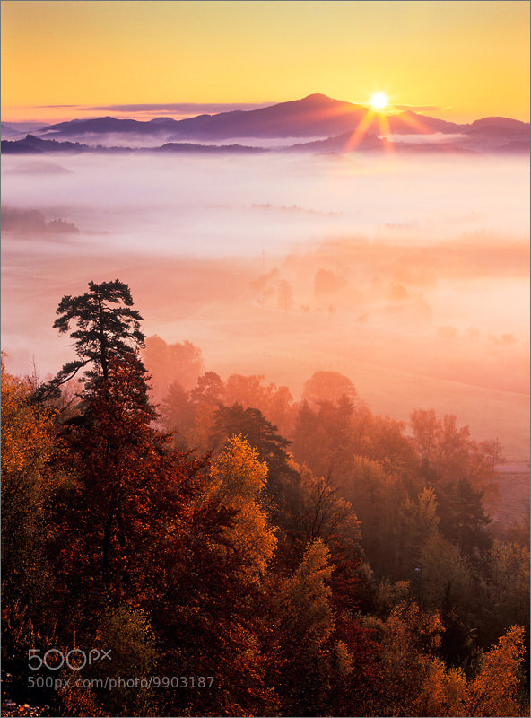 Photograph Sunny morning by Petr Podhajsky on 500px