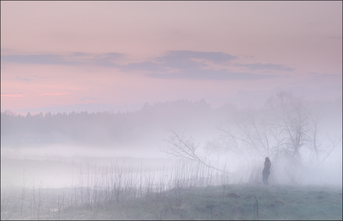 Photograph in the fog by Zbigniew Sadowski on 500px