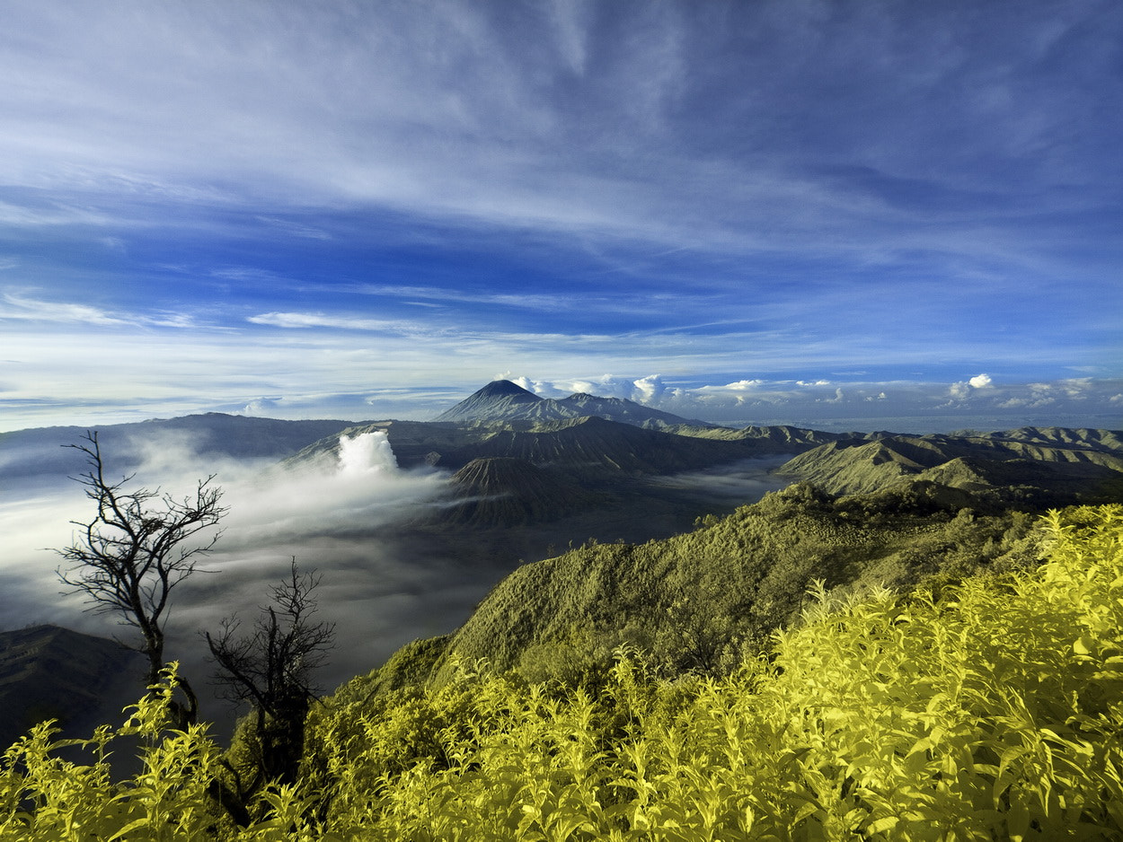 Photograph Mount Bromo by SIJANTO NATURE on 500px