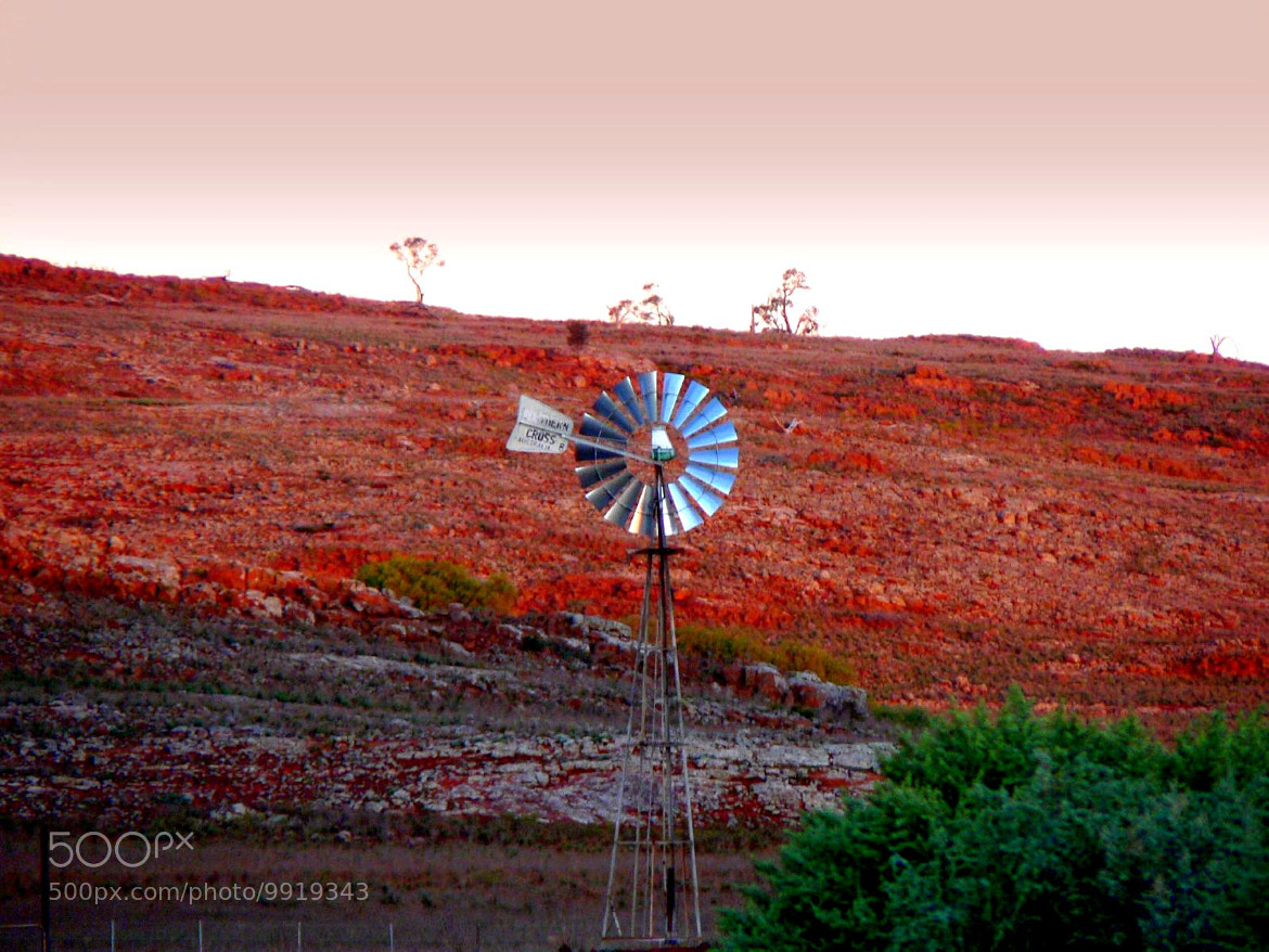 Photograph Outback Windmill by di  northey on 500px