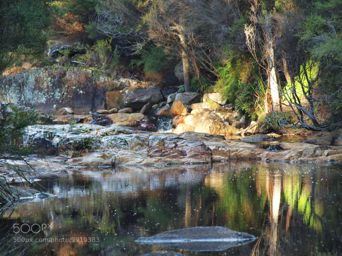 Photograph River Reflections by di  northey on 500px