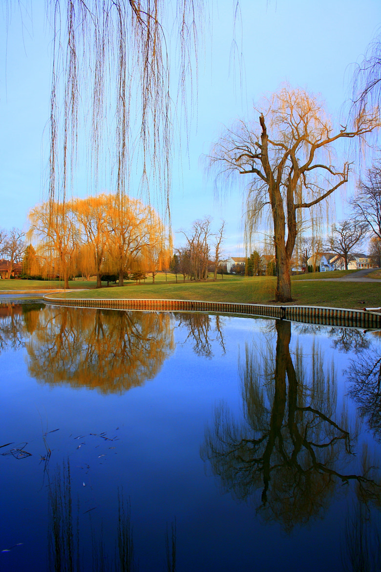 Photograph Reflection by Pranab Ghosh on 500px