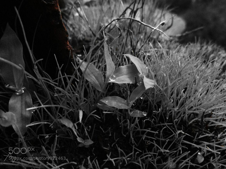 Photograph perfect catch by ajinkya dixit on 500px