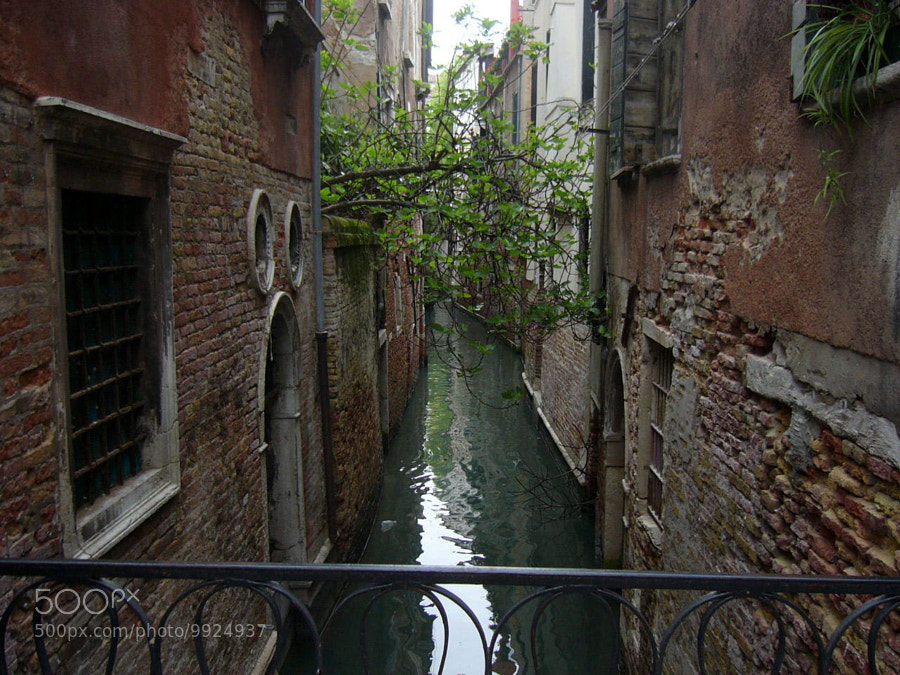 Photograph venezia 4 by piercalab70 on 500px